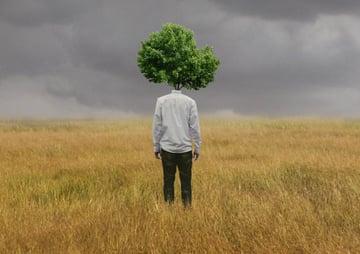 Add tree