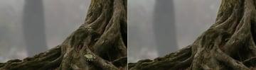 tree cloning