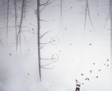 add more birds