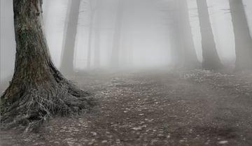 tree 2 masking