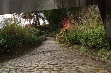 path 1 flipped horizontally