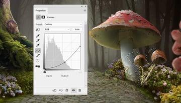 mushrooms 2 curves