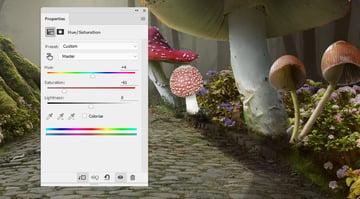 mushroom 4 hue saturation
