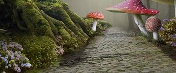 add mushroom 5