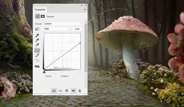 mushroom 1 curves 2