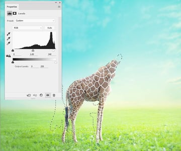 giraffe levels