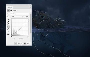 fish curves 2