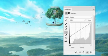 boat photomanipulation - birds curves