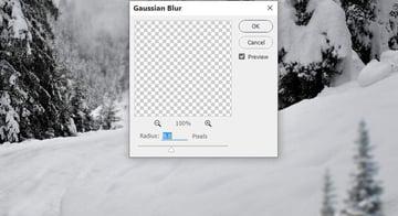 photo manipulation - trees 1 gaussian blur