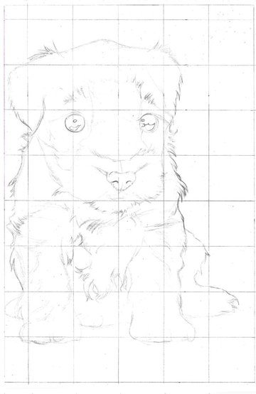 Once your figure has been constructed then fill in all of the fine details including where areas of tone differ