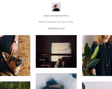 An example of a VSCO Grid viewed on desktop