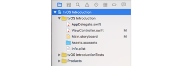 tvOS App Structure