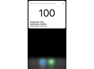 Custom Notification Interface