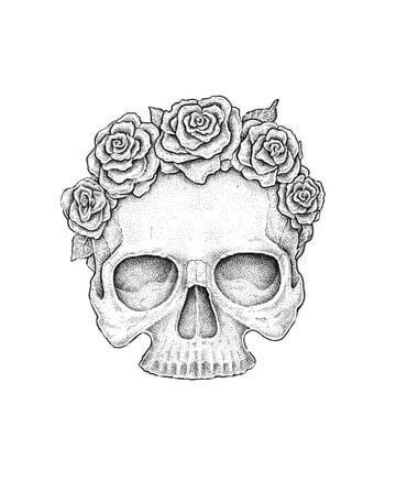 Creating skulls seams