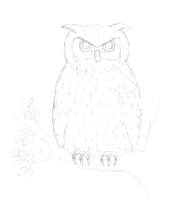 Creating the pattern of the owls body