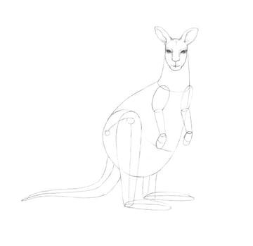 Working on the eyes of the kangaroo