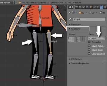 Linking the thigh bones to pelvic