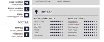 professional skills on resume