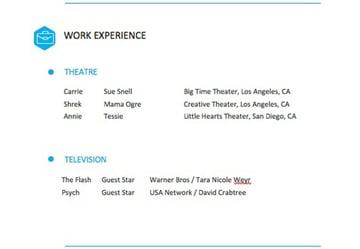 Work Experience Edited