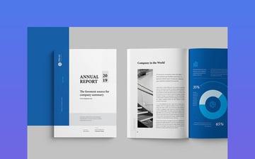 Nonprofit Annual Report and Corporate Identity Brochure