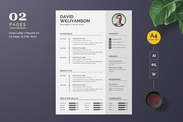 Word Resume Templates Example