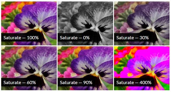 CSS Saturate Filter Effect