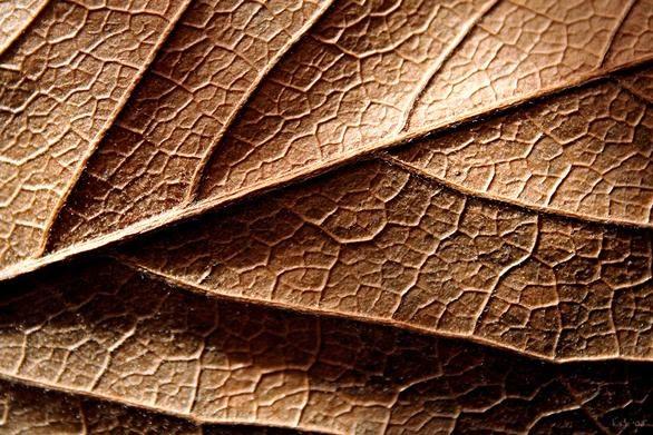 K texture
