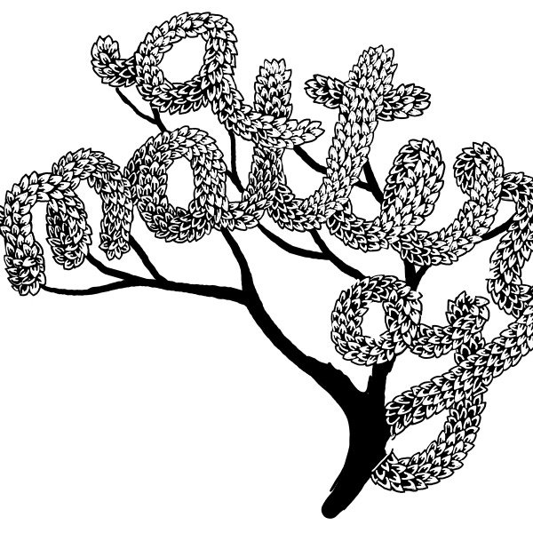 Draw the Leaves