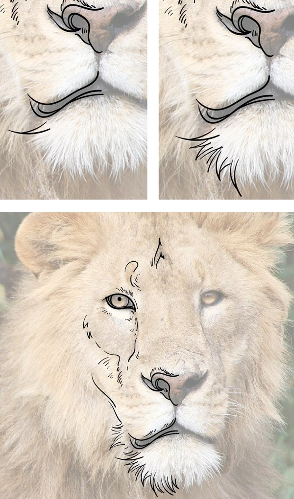 Use curved strokes to add a bearded part under the mouth