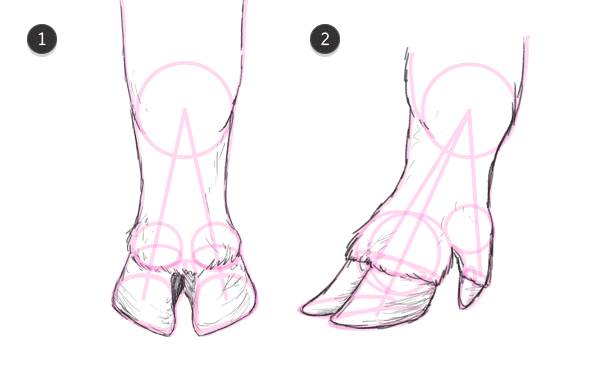 how to draw pig hooves 5