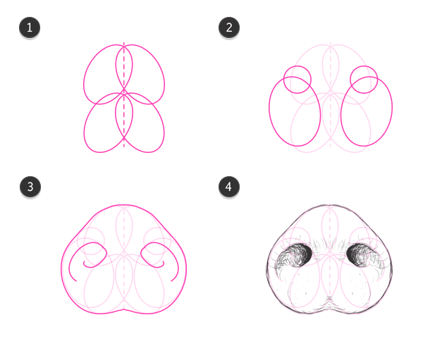 how to draw pig snout