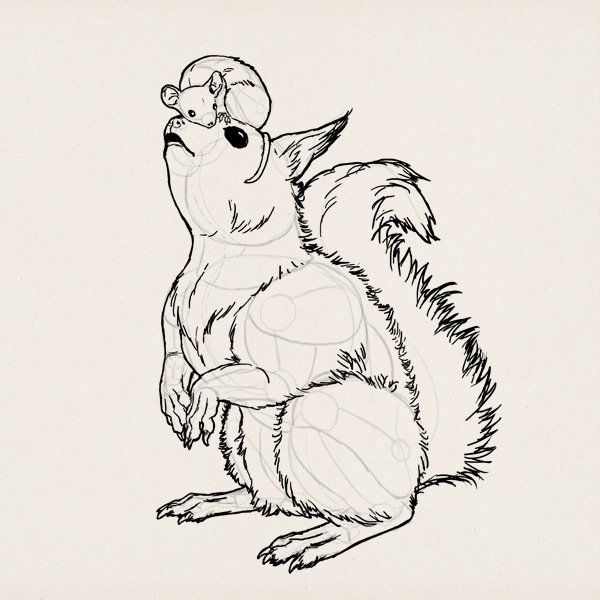 draw a rodent squirrel mouse 9
