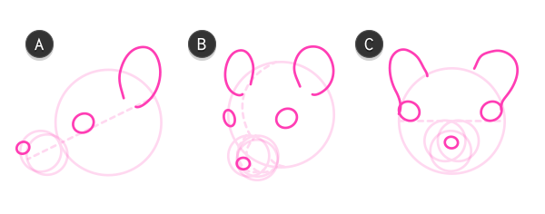 how to draw rodent head mouse 3