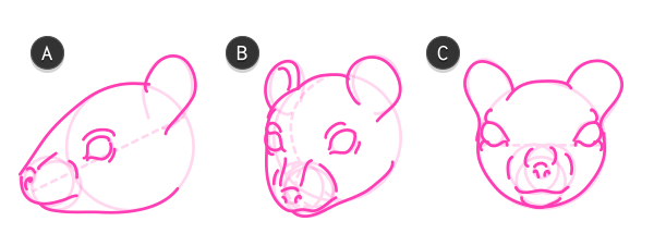 how to draw rodent head mouse 4