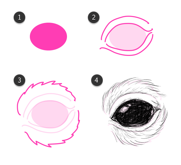 how to draw rodent eyes mouse