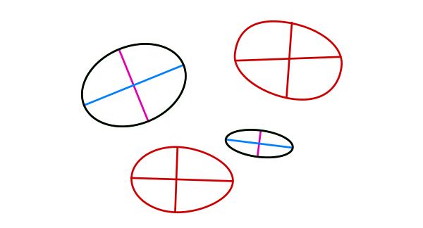 perspective how to draw ellipsoid torso capsule barrel 2