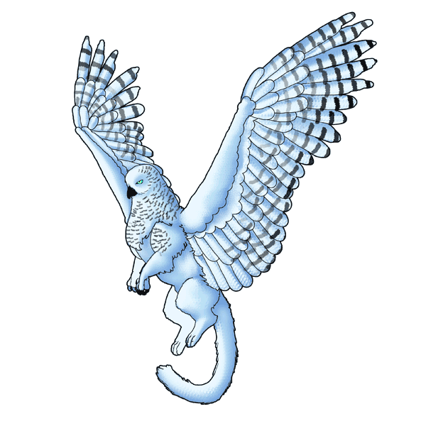 animation animal griffin flight flying wings draw photoshop feathers marking 4