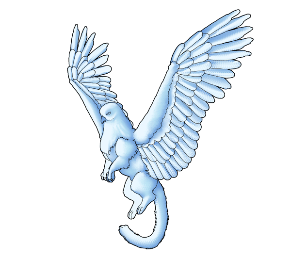 animation animal griffin flight flying wings draw photoshop blend feathers 4