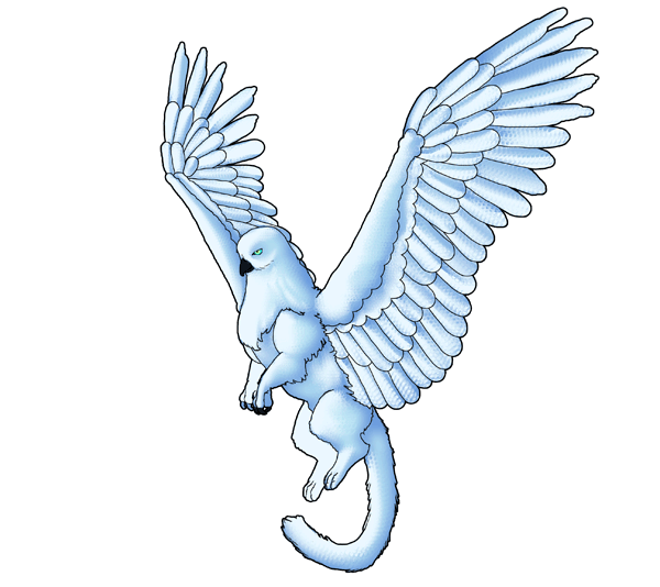 animation animal griffin flight flying wings draw photoshop blend feathers 5