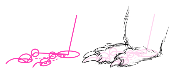 how to draw porcupine feet paws claws