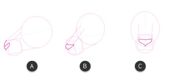 kangaroo how to draw head 4