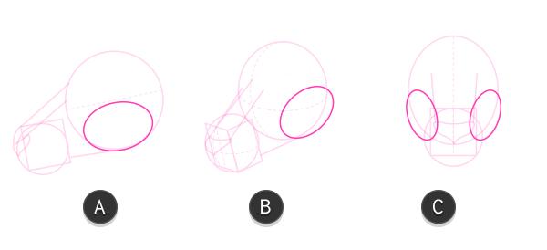 kangaroo how to draw head 5