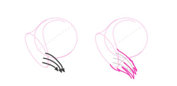 koala how to draw ears 4