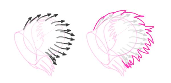 koala how to draw ears 6