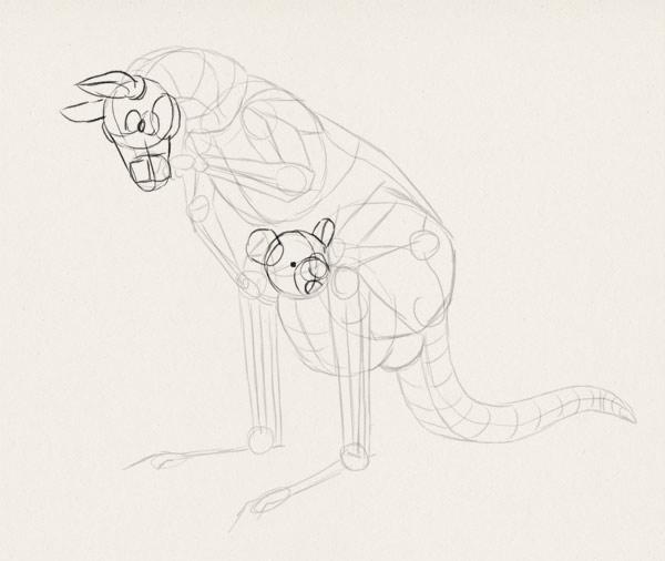 how to draw kangaroo koala illustration 4