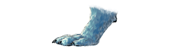 how to draw wolf animals paws 2