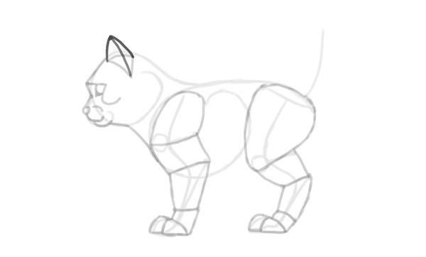 photoshop draw sketch kitten cat simple 17