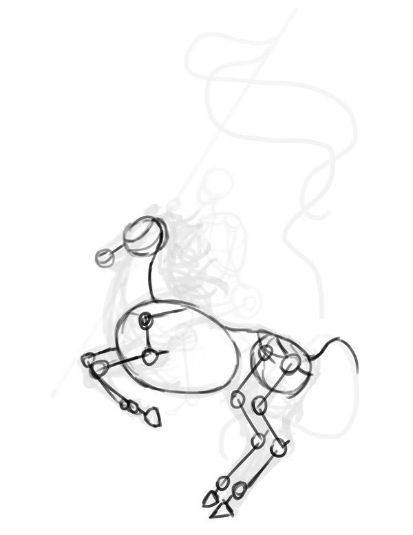 horse anatomy rider drawing