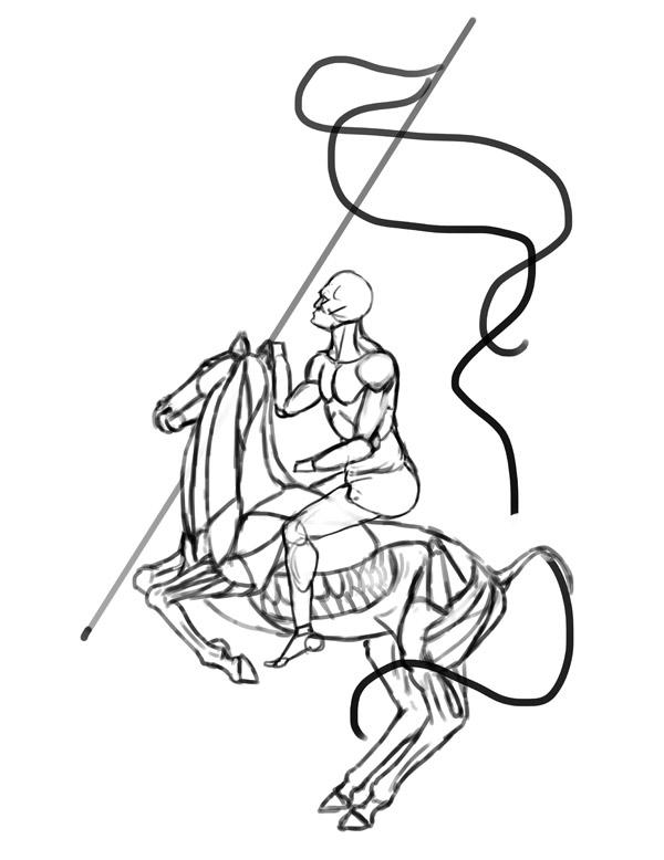 horse anatomy rider drawing 5