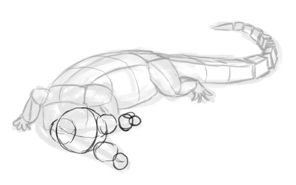 how to draw crocodile step by step 3